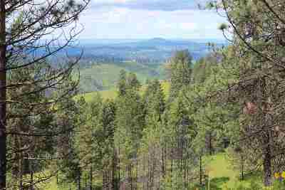 Kamiah Residential Lots & Land For Sale: Beaverslide