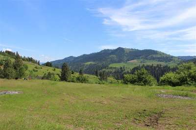 Lenore Residential Lots & Land For Sale: 620 Old Peck Grade