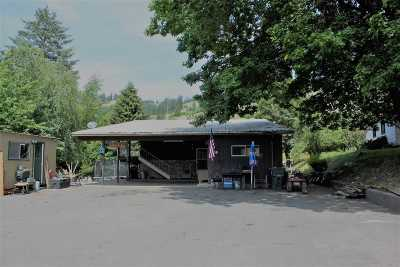 Orofino Single Family Home For Sale: 1238 Shriver Road