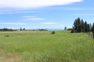 Kamiah Residential Lots & Land For Sale: Lot 5 Almost Heaven Sub-Division
