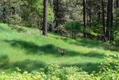 Orofino Residential Lots & Land For Sale: lot 3 Whitetail Drive
