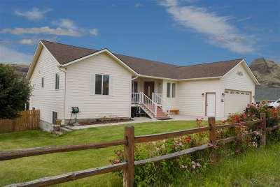 Asotin Single Family Home For Sale: 101 Appleford Drive