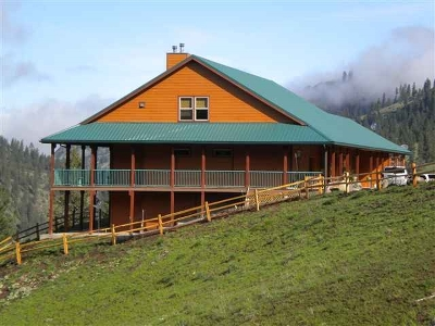 Orofino Single Family Home For Sale: 2109 Highway 11