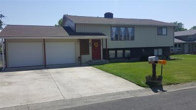 Lewiston Single Family Home For Sale: 2012 Birch Drive
