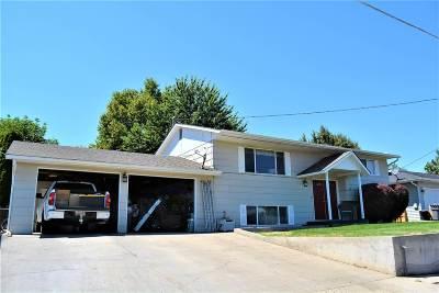 Lewiston, Clarkston Single Family Home For Sale: 1729 Stafford Drive