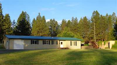 Grangeville Single Family Home For Sale: 529 Mt. Idaho Grade Road