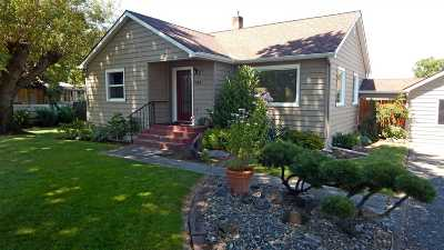 Lewiston Single Family Home For Sale: 725 Warner Ave.