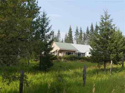 Orofino Single Family Home For Sale: 966 Bashaw Road