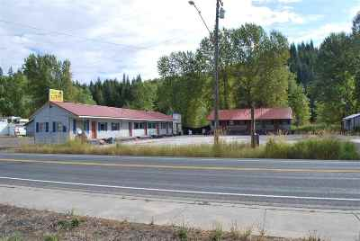 Commercial For Sale: 509 S Main Street