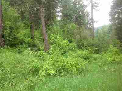 Orofino Residential Lots & Land For Sale: Parcel A Huckleberry Butte