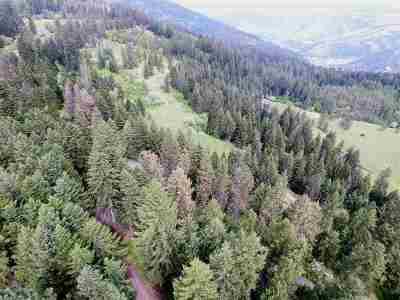 Orofino Residential Lots & Land For Sale: Meadow Lark Road
