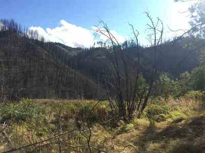 Peck, Pierce, Weippe Residential Lots & Land For Sale: Parcel B Lolo Creek Rd