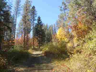 Orofino Residential Lots & Land For Sale: Independence Road