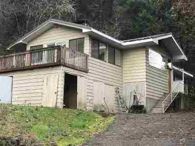 Orofino Single Family Home For Sale: 13828 W 4th Ave