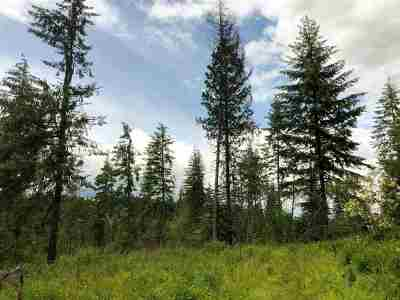 Orofino Residential Lots & Land For Sale: Upper Ove Parcel 8