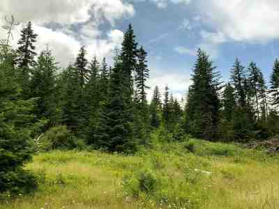 Orofino Residential Lots & Land For Sale: Upper Ove Parcel 10