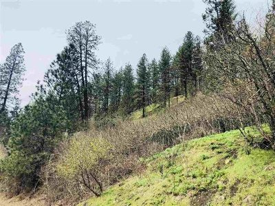 Orofino Residential Lots & Land For Sale: Ellis Avenue