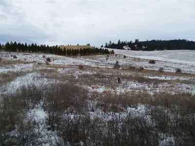 Kamiah Residential Lots & Land For Sale: Woodland Reflections Lot 4