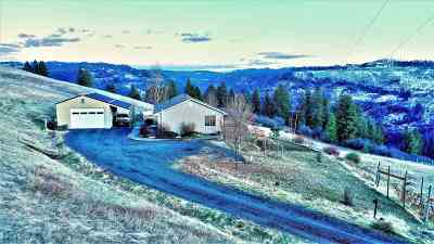 Orofino ID Single Family Home For Sale: $360,000