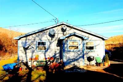 Single Family Home For Sale: 199 Alpowa Creek Road