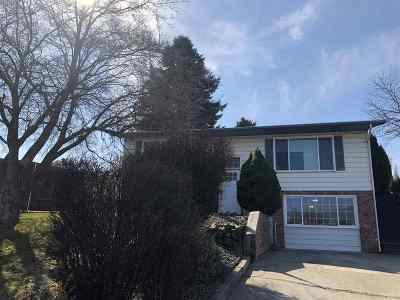 Lewiston Single Family Home For Sale: 1118 17th Ave
