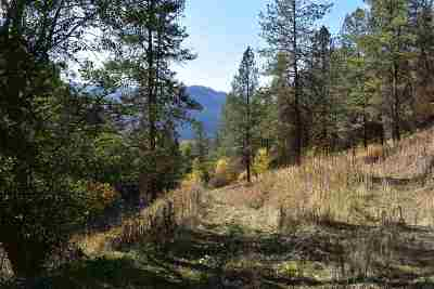 Orofino Residential Lots & Land For Sale: 599 Lakeview Drive