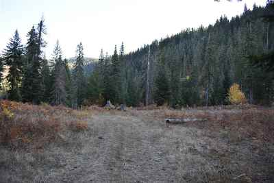 Orofino Residential Lots & Land For Sale: Moose Ridge Drive