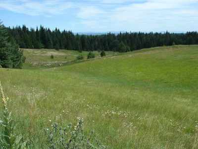 Lenore Residential Lots & Land For Sale: tbd Lot 3 Ceres Drive