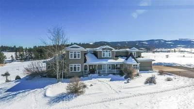 Grangeville Single Family Home For Sale: 107 Poor Farm Road