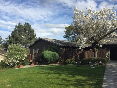 Lewiston Single Family Home For Sale: 345 W Shiloh Drive