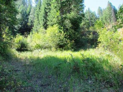 New Meadows Residential Lots & Land For Sale: Tbd S Hwy 95