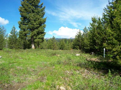 Cascade Residential Lots & Land For Sale: L7b2 Vaughn Drive