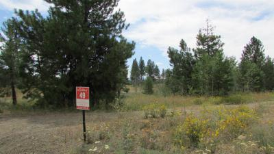 McCall Residential Lots & Land For Sale: 3650 Whitetail Drive