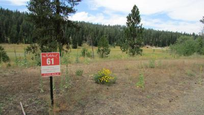 McCall Residential Lots & Land For Sale: 350 Whitetail Drive