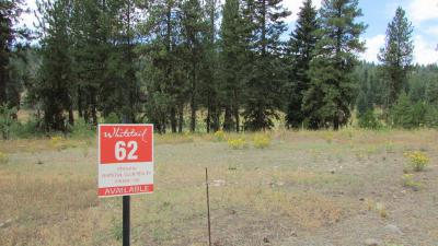 McCall Residential Lots & Land For Sale: 346 Whitetail Drive