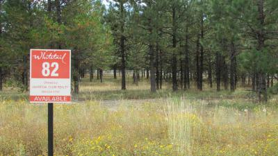 McCall Residential Lots & Land For Sale: 310 Whitetail Drive