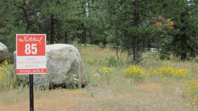 McCall Residential Lots & Land For Sale: 412 Osprey View Drive