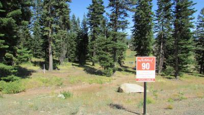 McCall Residential Lots & Land For Sale: 4601 Williams Creek Loop