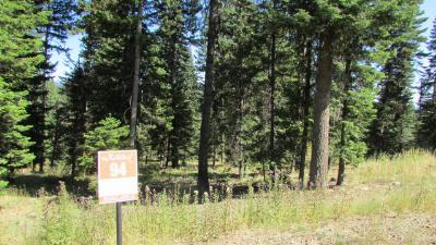 McCall Residential Lots & Land For Sale: 4617 Williams Creek Loop