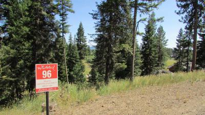 McCall Residential Lots & Land For Sale: 4625 Williams Creek Loop