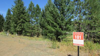 McCall Residential Lots & Land For Sale: 4313 Song Sparrow Drive