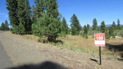 McCall Residential Lots & Land For Sale: 4309 Song Sparrow Drive