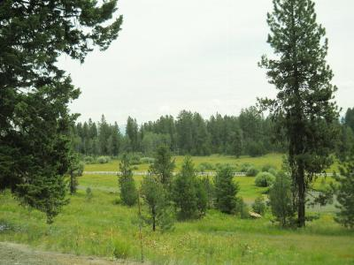McCall Residential Lots & Land For Sale: 4314 Song Sparrow Drive