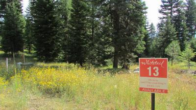 McCall Residential Lots & Land For Sale: 4650 Williams Creek Loop