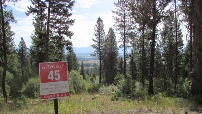 McCall Residential Lots & Land For Sale: 605 Migratory Ridge