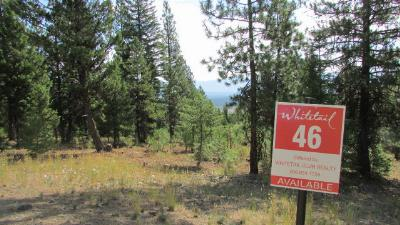 McCall Residential Lots & Land For Sale: 609 Migratory Ridge