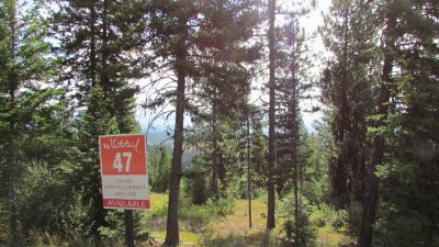 McCall Residential Lots & Land For Sale: 603 Lichen Lane