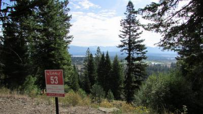 McCall Residential Lots & Land For Sale: 627 Lichen Lane
