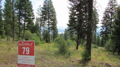 McCall Residential Lots & Land For Sale: 645 Migratory Ridge