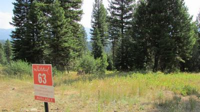 McCall Residential Lots & Land For Sale: 667 Aster Court